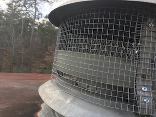 Animal-Pest-Removal-Atlanta-GA-Smart-Solutions-4