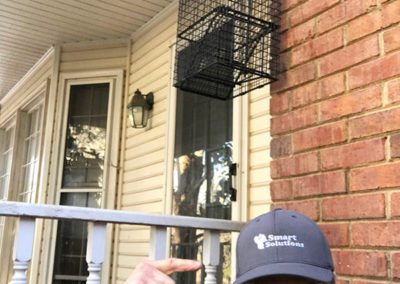 Animal-Pest-Removal-Atlanta-GA-Smart-Solutions-8