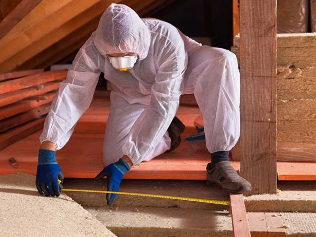 Attic Clean Up And Decontamination
