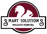 Smart Solutions WRS